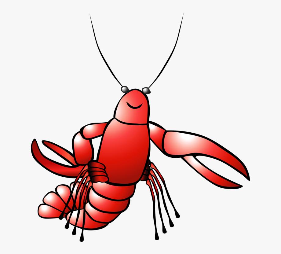 Lobster as food shrimp. Seafood clipart crayfish