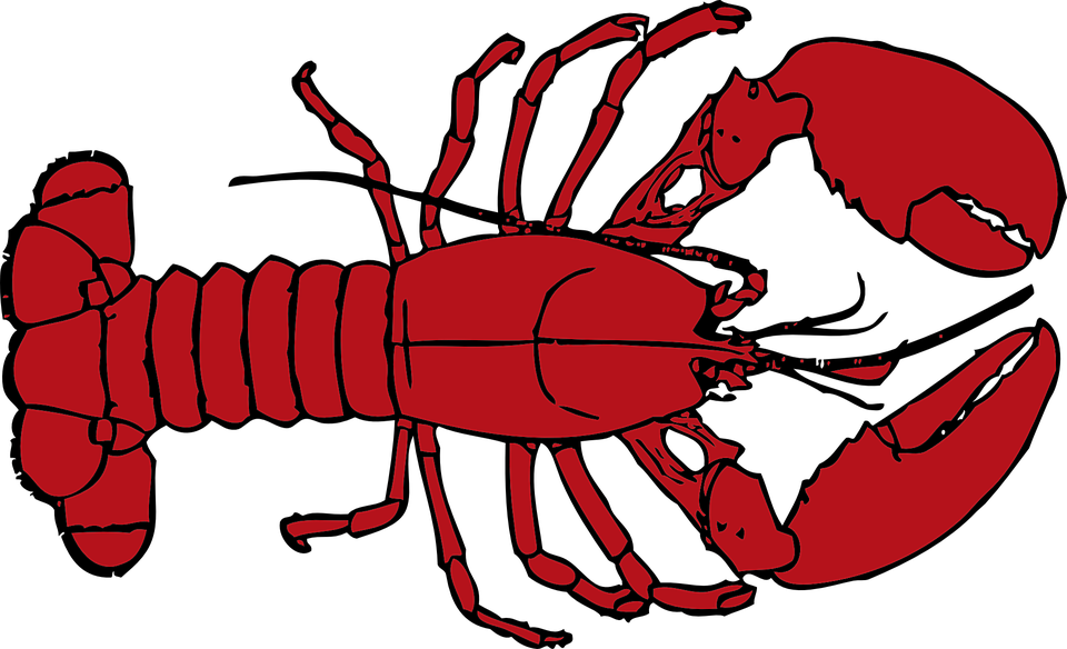 Lobster clipart drawn. Tribal caribbean drawing by