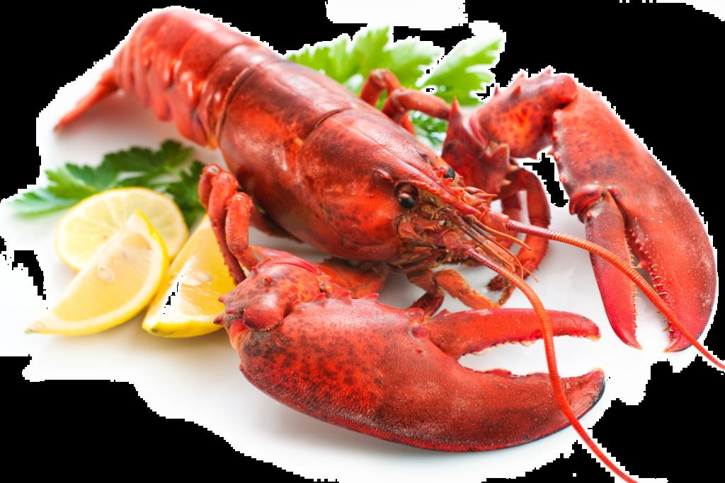 Transparent png peoplepng com. Lobster clipart lobster dish
