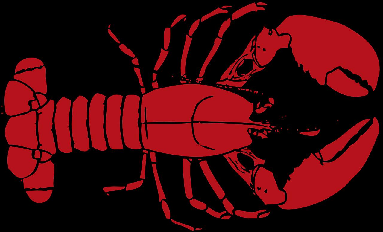 Lobster clipart lobster dish.  bafbo