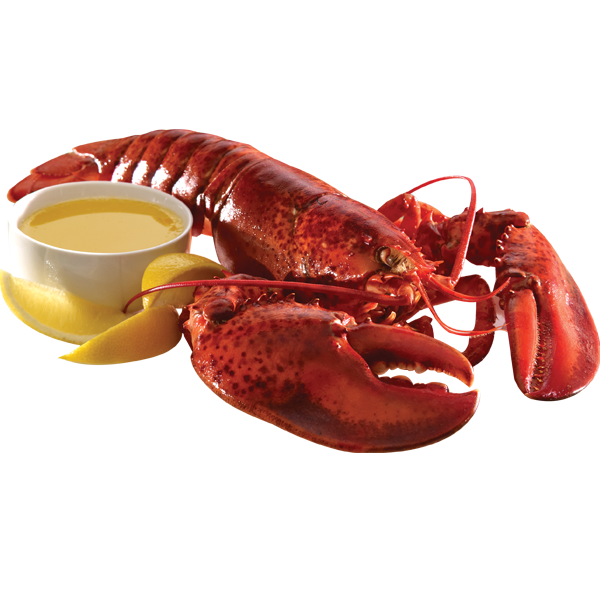 Lobster clipart lobster dish.  different types of