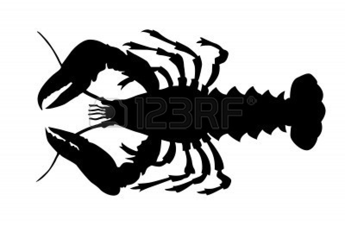 Cliparts wikiclipart . Lobster clipart lobster outline
