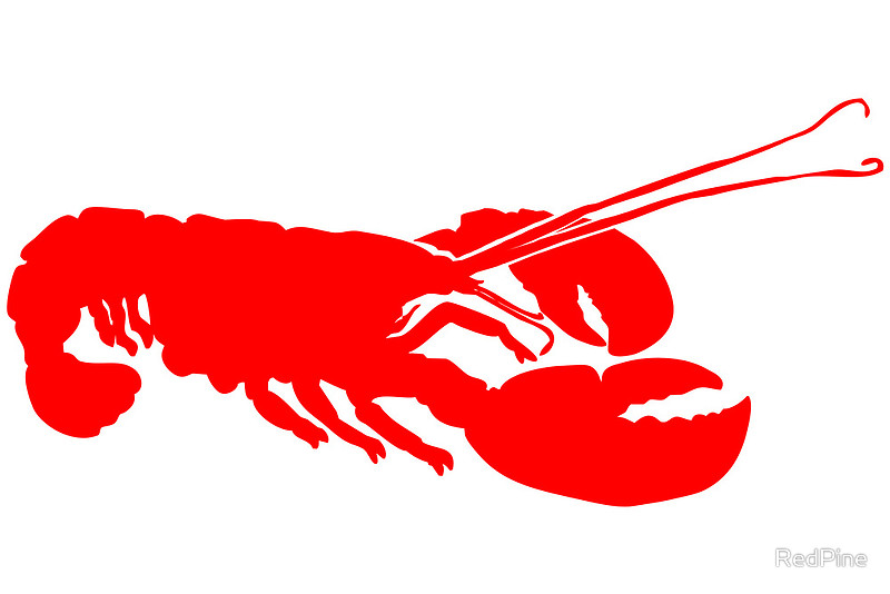 Canvas prints by redpine. Lobster clipart lobster outline