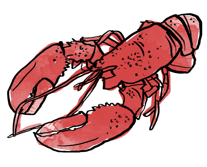 shades of red. Lobster clipart maine lobster
