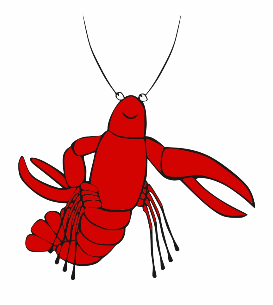 Lobster clipart maine lobster. Transparent background no
