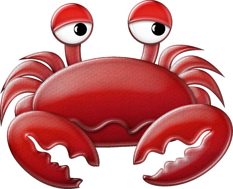 Kaagard oceandeep crab png. Lobster clipart ocean life