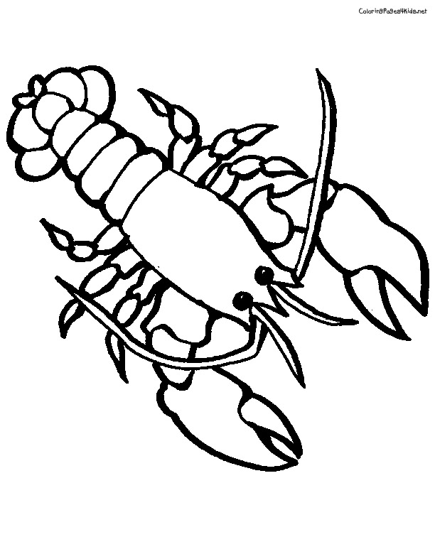 Free pictures for kids. Lobster clipart printable