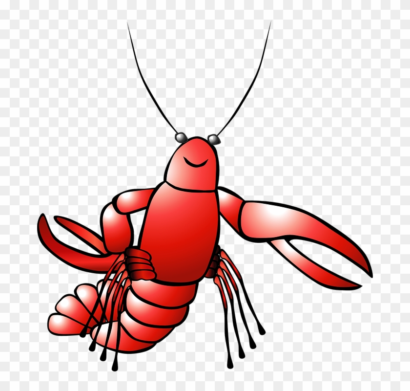 Lobster clipart shell fish. Shellfish free