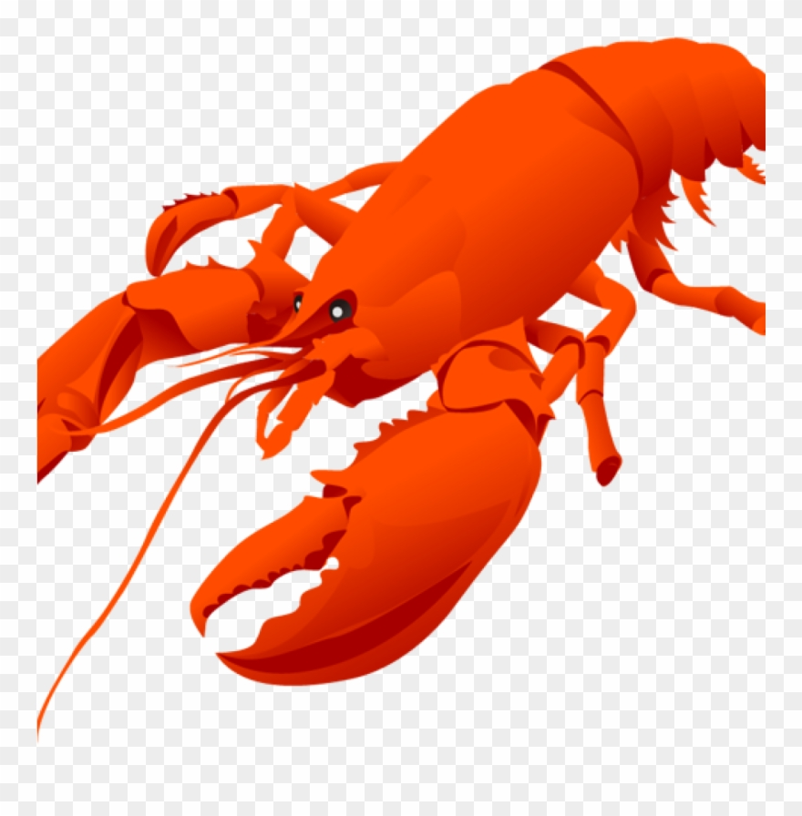 Image transparent cute . Lobster clipart shell fish