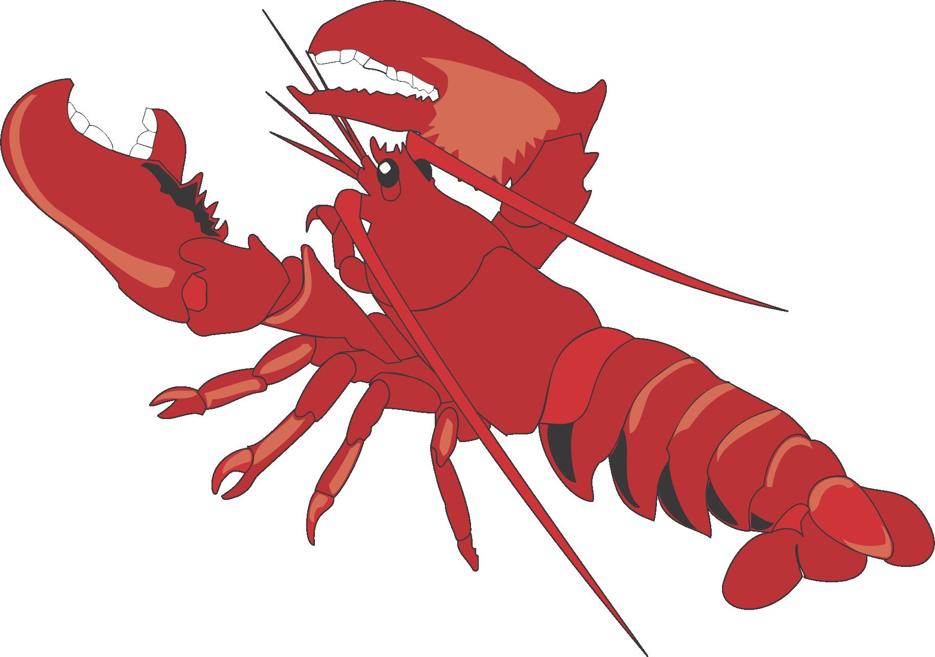 Lobster clipart shell fish. Cartoon clip art transprent