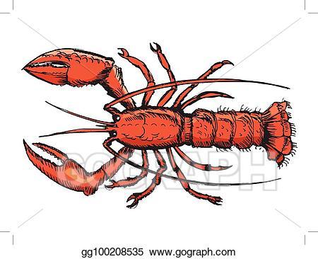 Lobster clipart sketch. Vector stock of clip