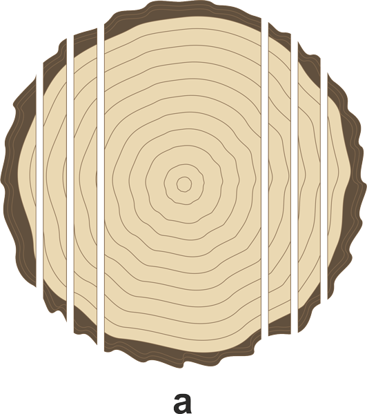 Forms and methods of. Logs clipart timber