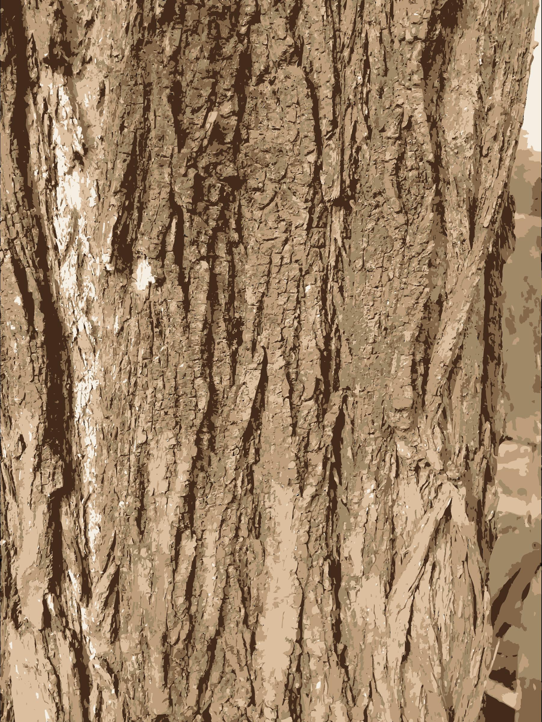 Logs clipart tree bark. Texture big image png