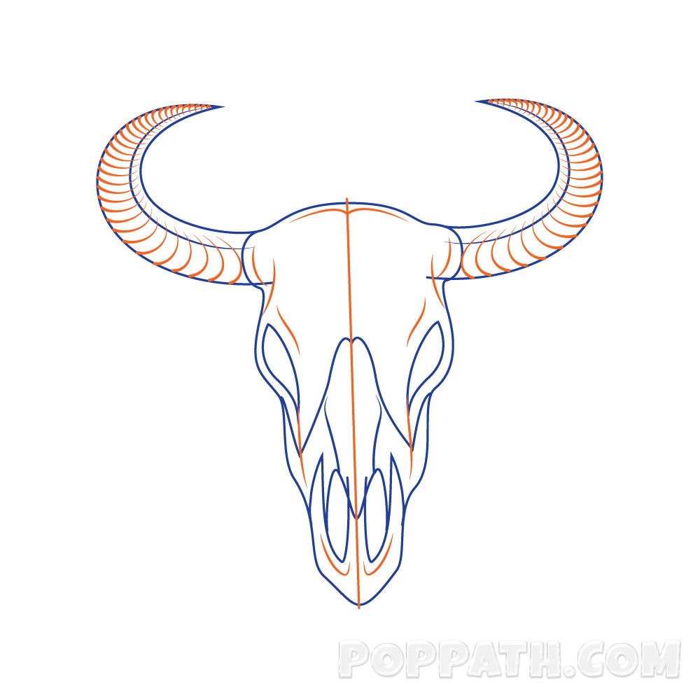 Longhorn clipart animal skull. How to draw a