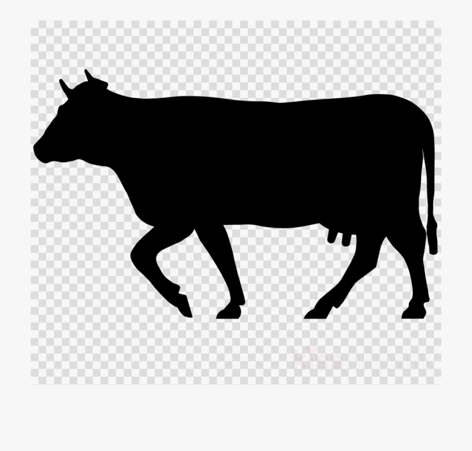 Longhorn clipart beef cow. Icon png cattle welsh