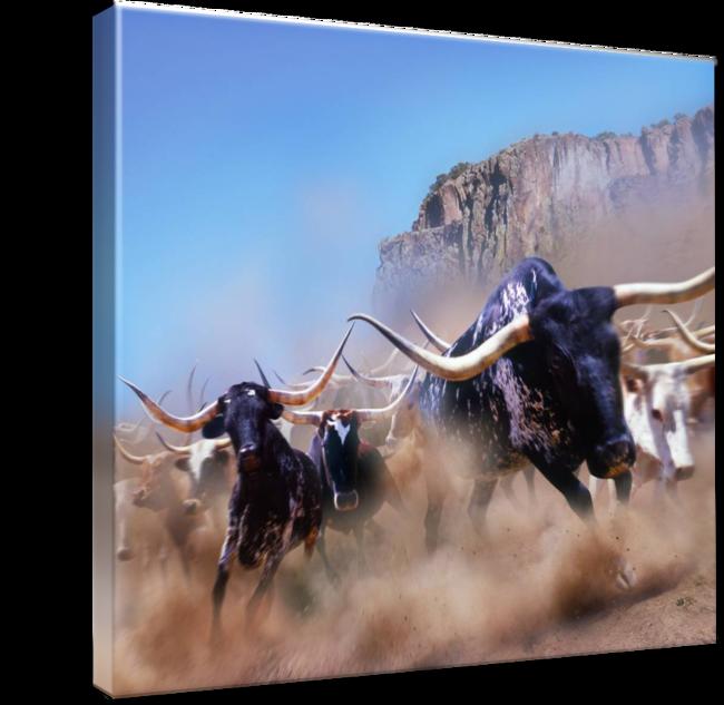 Longhorn clipart bevo. Stampede by john lund
