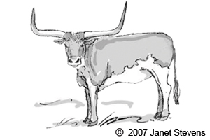 clip art clipartlook. Longhorn clipart black and white