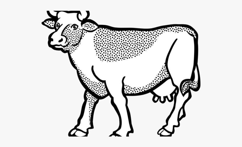 Cattle drawing cows . Longhorn clipart black and white