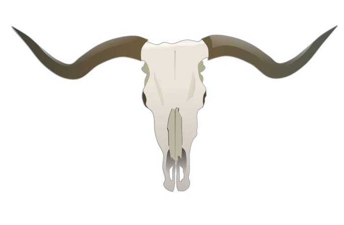Longhorn clipart cattle drive. Free vector clip art