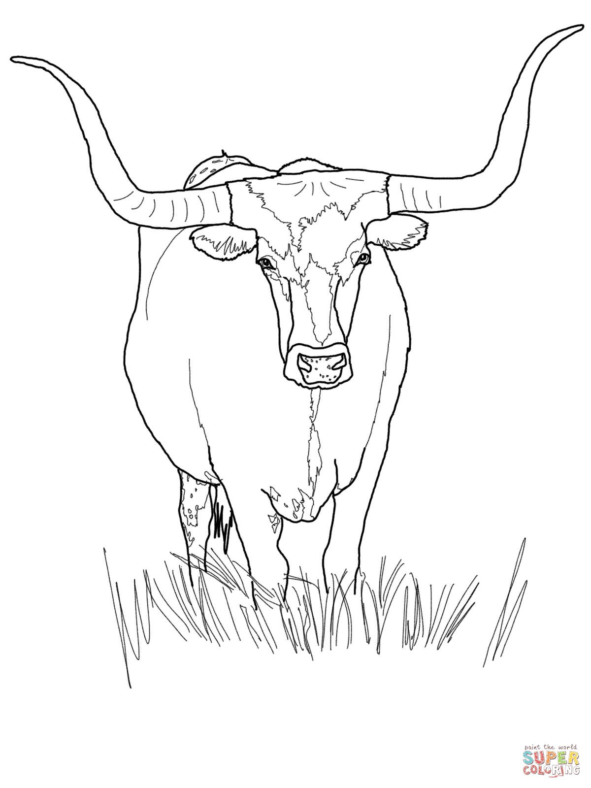 Pin by jill martinez. Longhorn clipart color