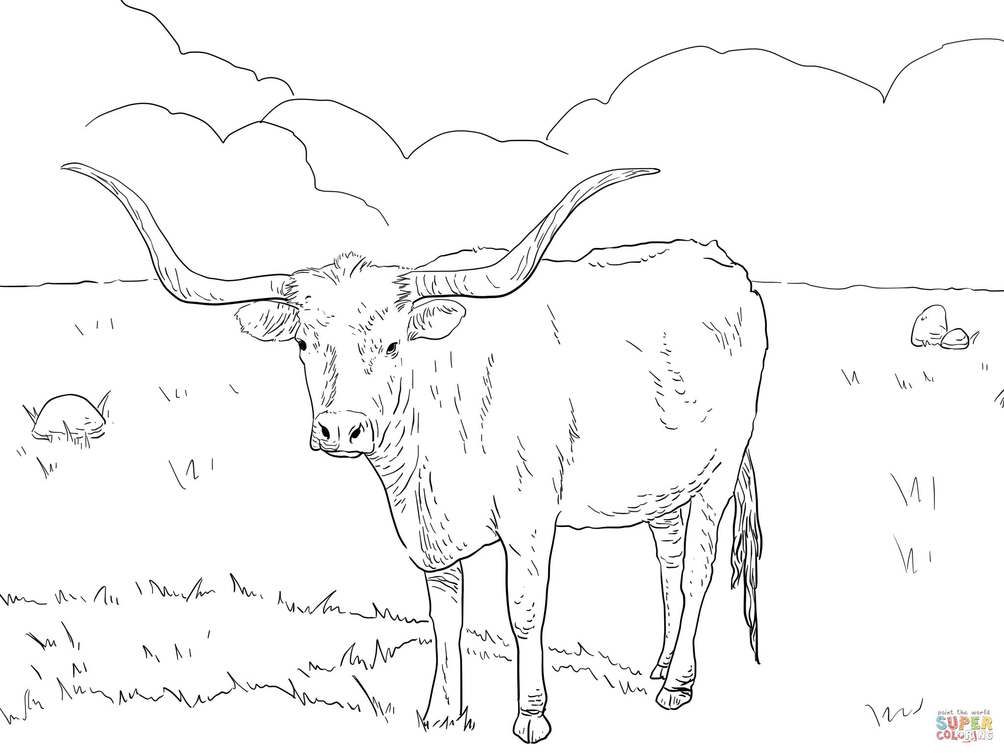 Texas cow coloring page. Longhorn clipart color