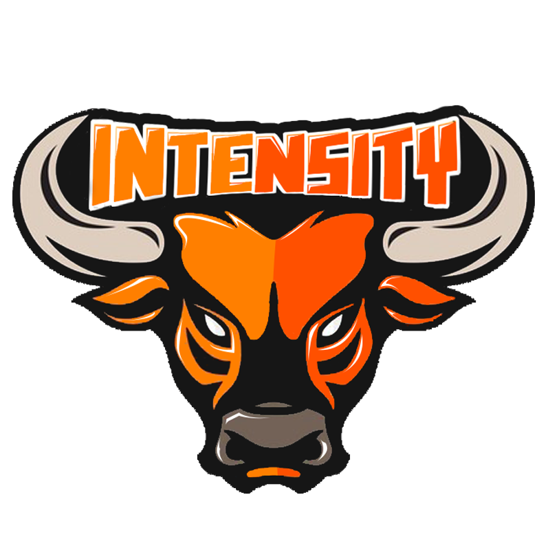 Longhorn clipart decal. Intensity logo by limitlessconcepts