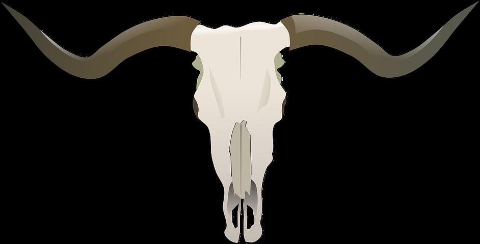 Longhorn clipart embroidery. Beef bones bull skull