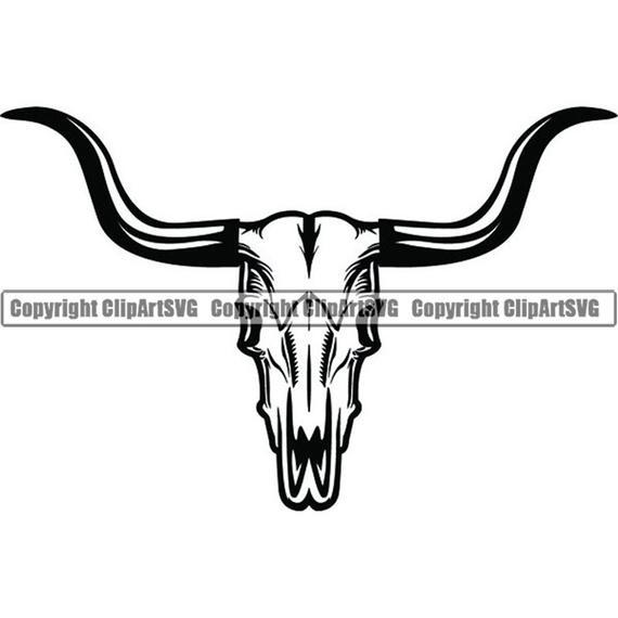 Bull skull skeleton bones. Longhorn clipart horns