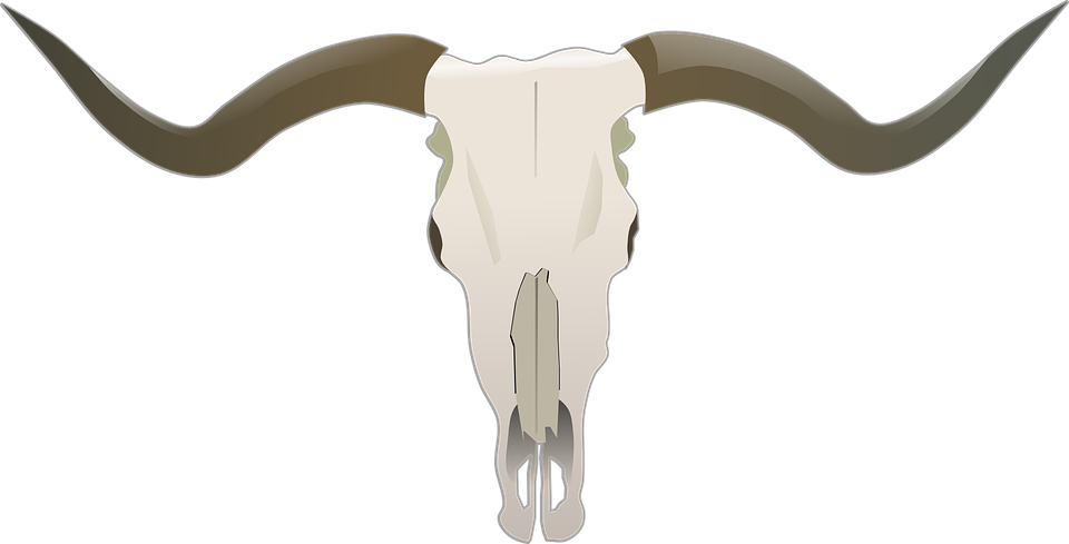 Longhorn clipart mascot. Bull by the horns