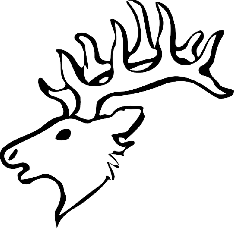 Longhorn Head Silhouette at GetDrawings.com | Free for personal use ...