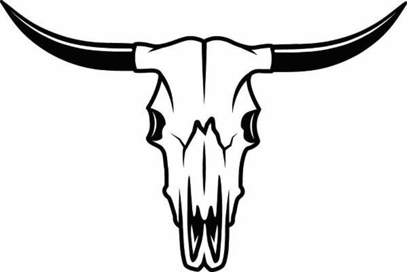 Bull skull bones horns. Longhorn clipart skeleton