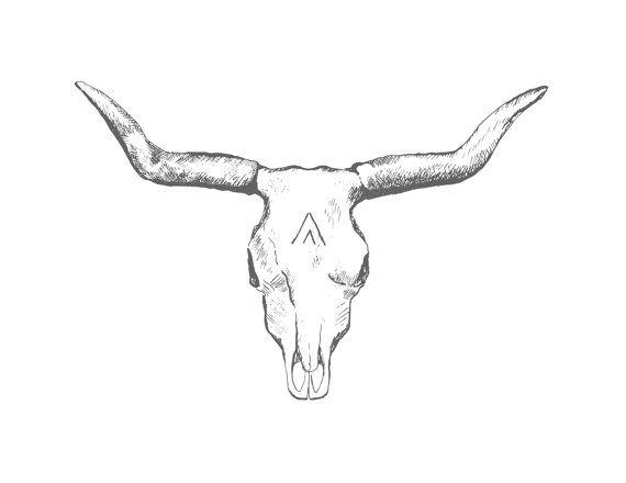Longhorn Skull Sketch at PaintingValley.com | Explore ...