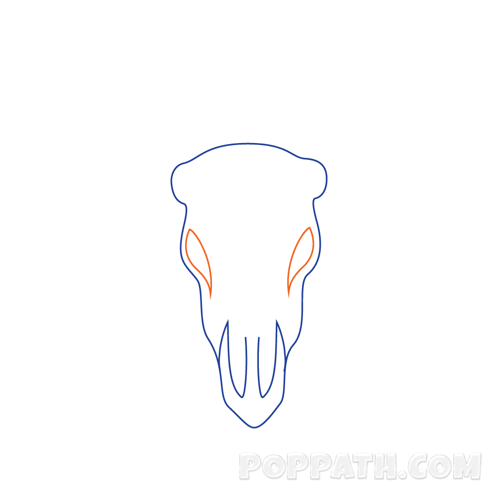 Longhorn clipart skull. How to draw a