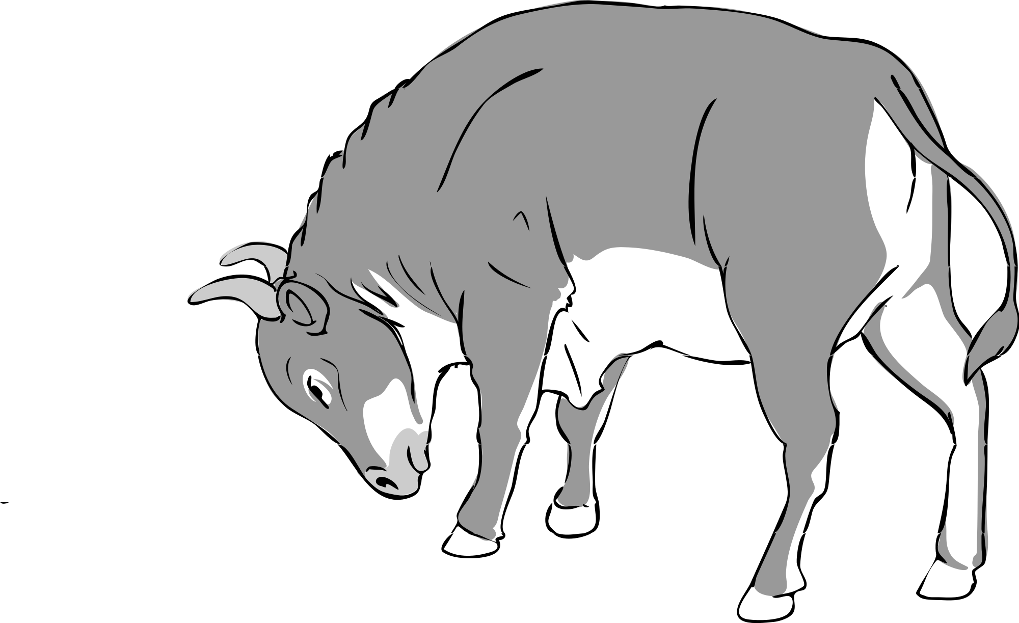 File bull bw wikimedia. Longhorn clipart svg