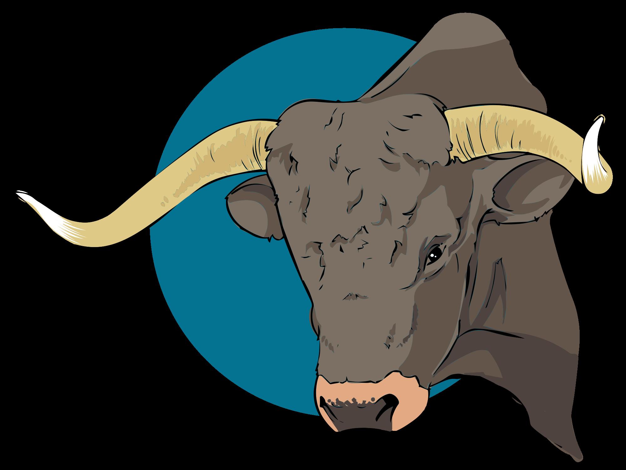 Longhorn clipart svg. File bull closeup wikimedia