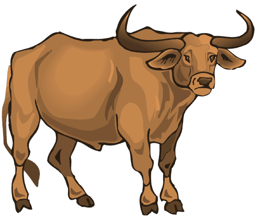 longhorn clipart transparent #125406698