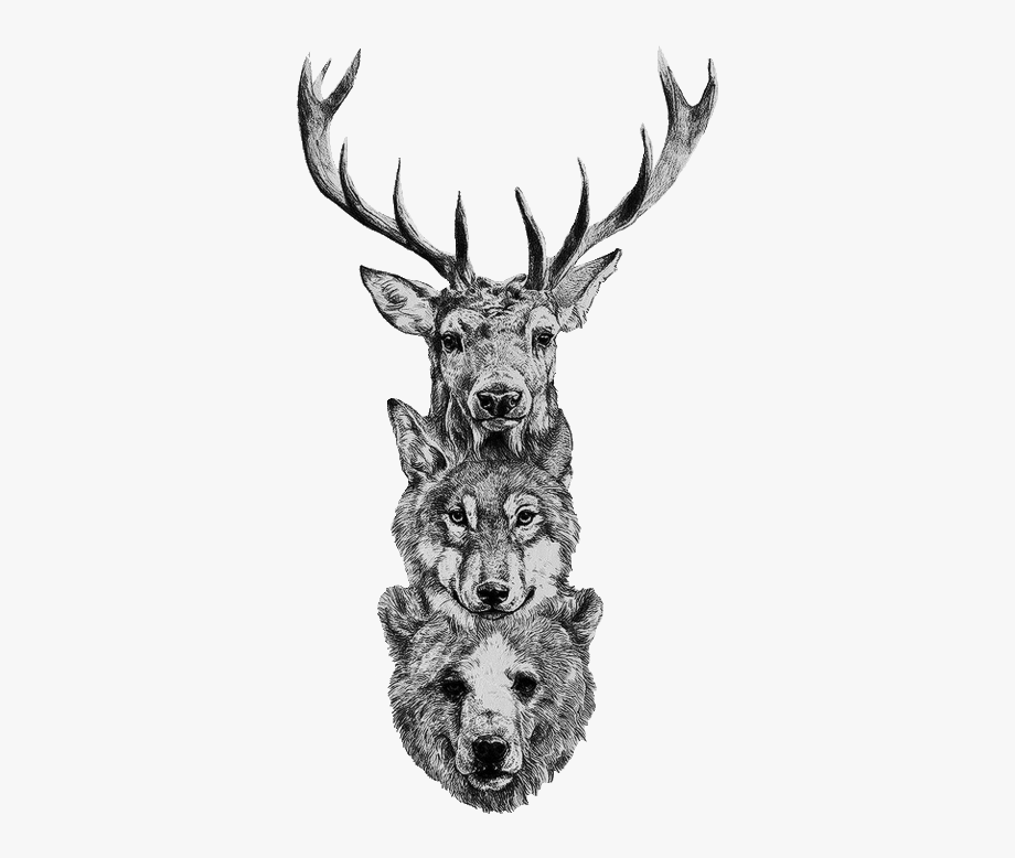 Bear wolf deer tattoo. Longhorn clipart zentangle