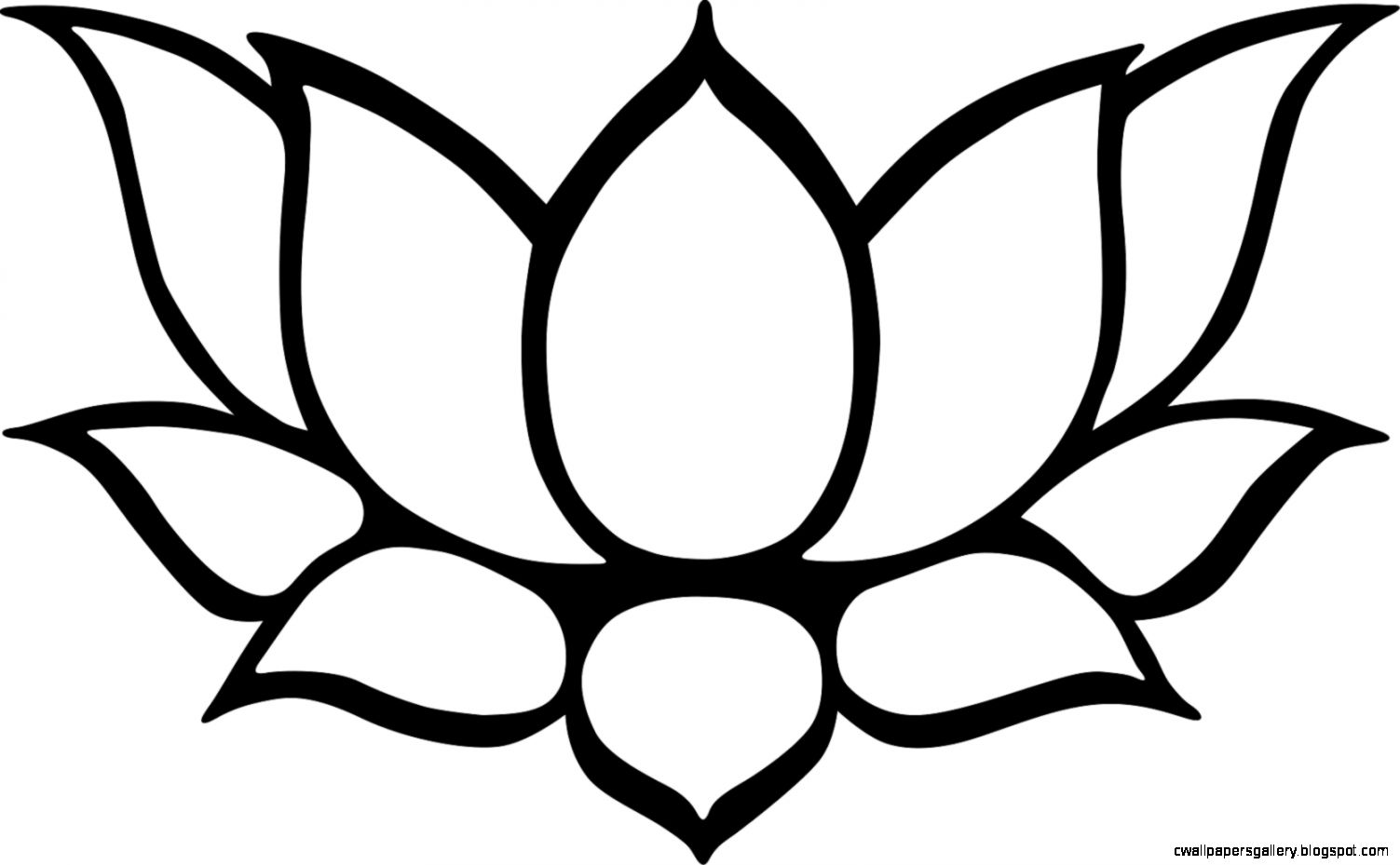 Lotus clipart. Flower drawing outline at