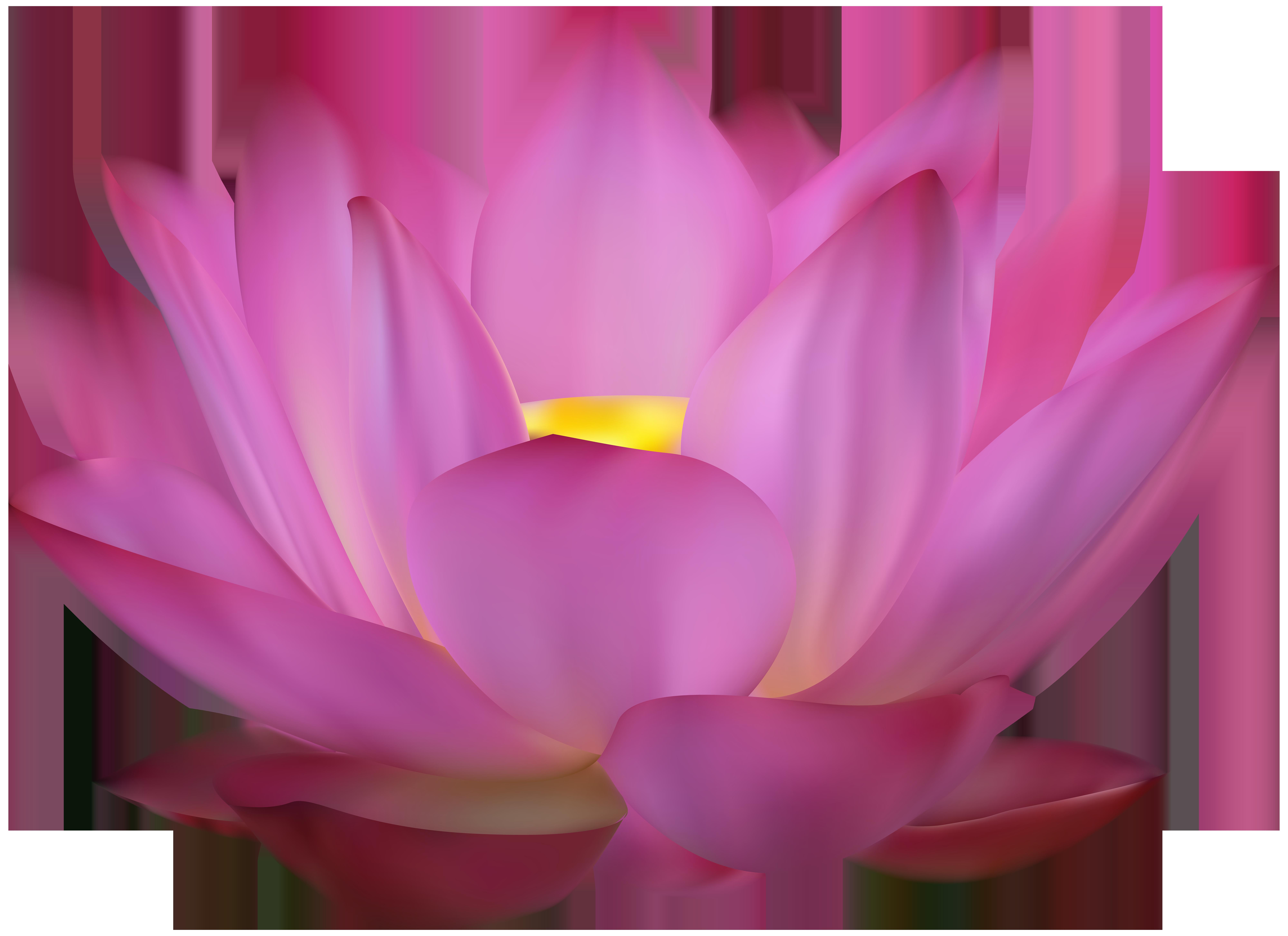 Lotus clipart. Pink clip art png