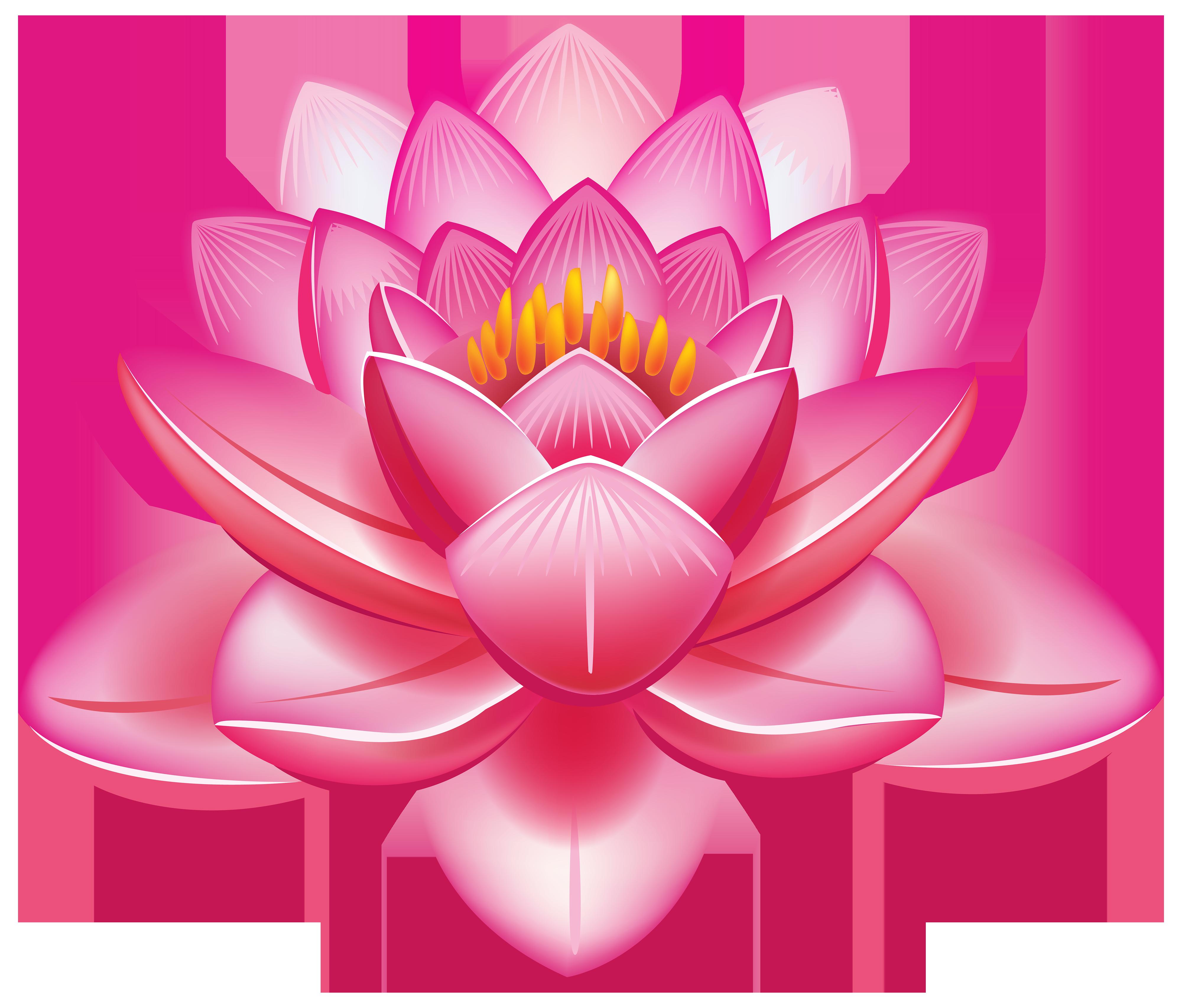 Clipart best web. Lotus flower png