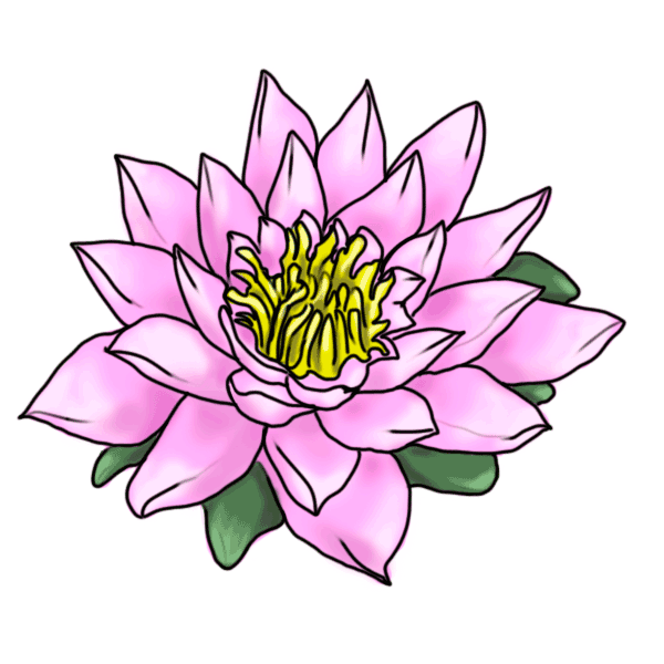 lotus clipart animated