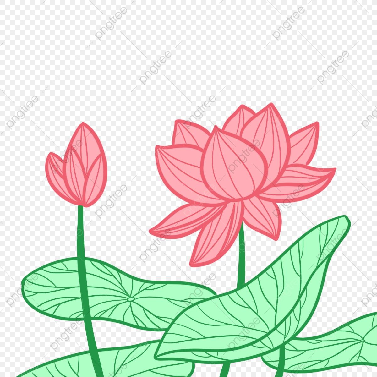Lotus clipart cute. Hand drawn family aquatic