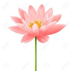 Lotus clipart esthetician. Pretty flower clip art