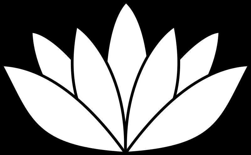 Lotus leave drawing