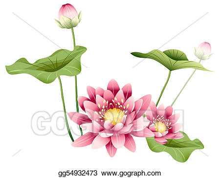 Flower and leaves . Lotus clipart leave drawing