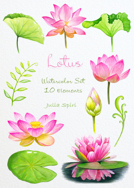 Pin on laser . Lotus clipart leave drawing