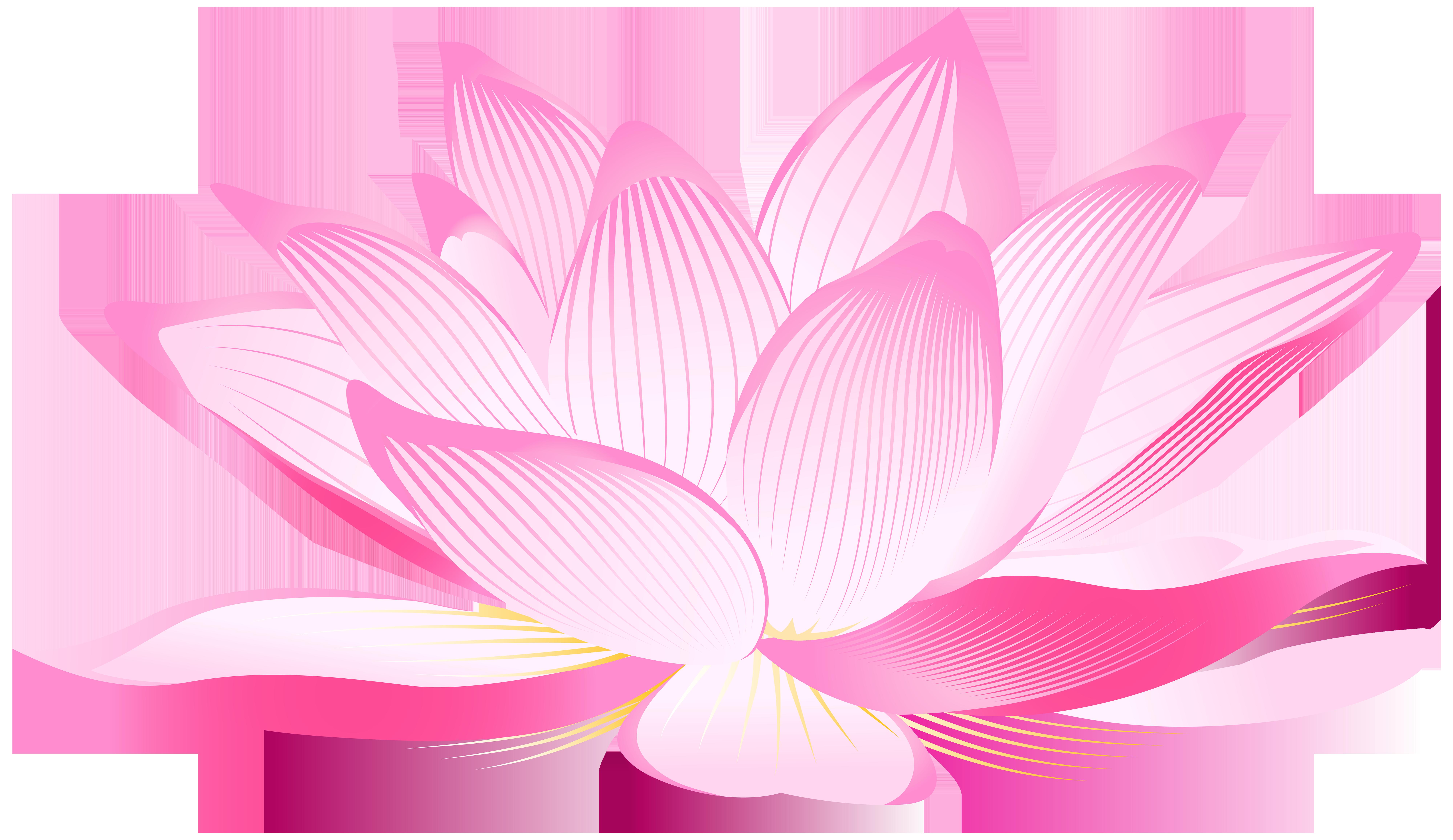 Nelumbo nucifera aquatic plants. Lotus clipart lotus plant