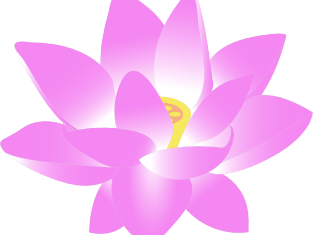 lotus clipart lout