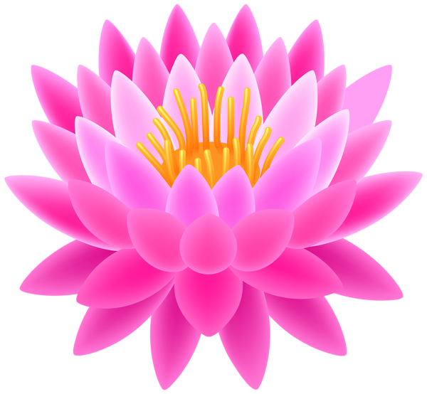 Image result for images. Lotus flower graphic png