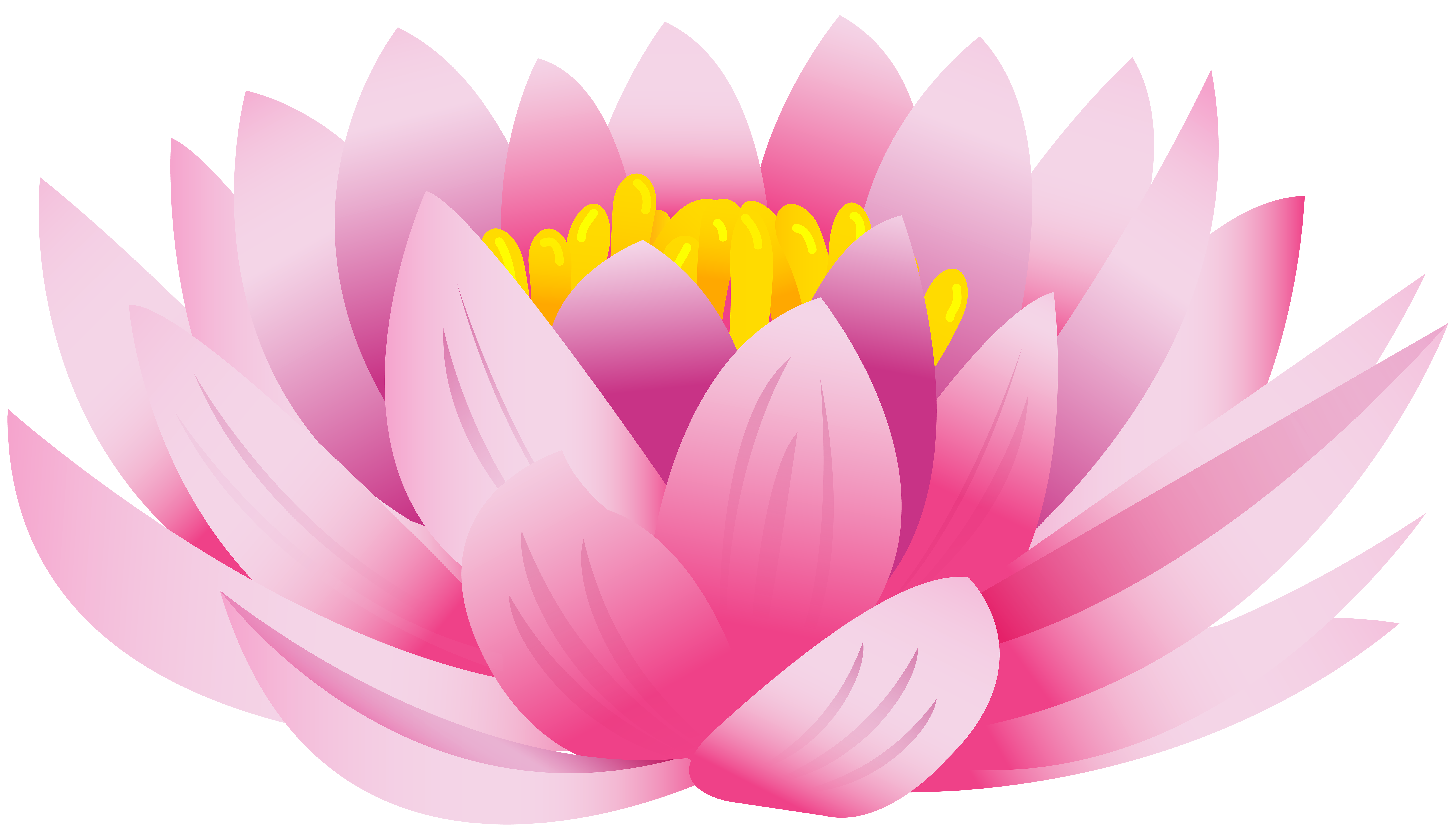 Clip art image gallery. Lotus flower graphic png